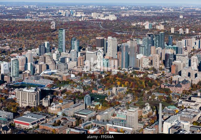 Hipopotamo Trans St And Toronto E St Yonge Escort Gerrard