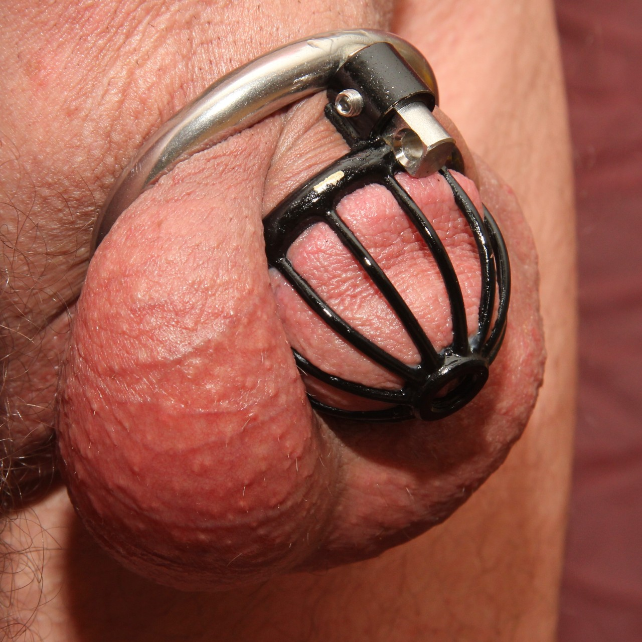 Chastity Male Locked Lust In