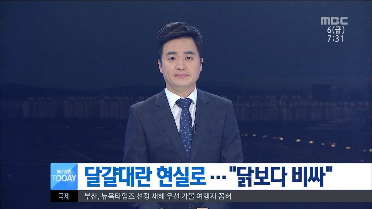 Transgender Daejeon Meet
