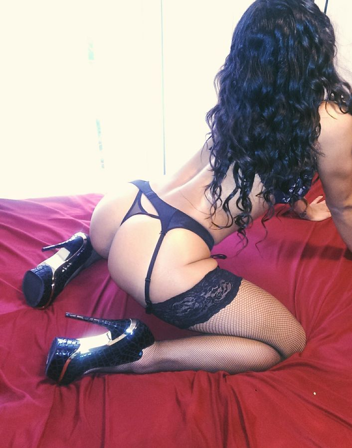 Halifax Escort Diamond Brooke