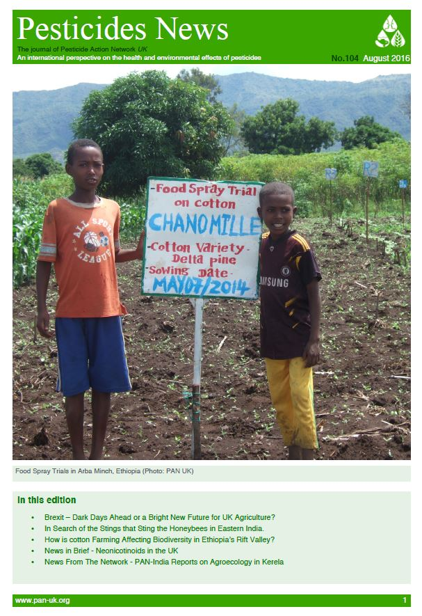 Hailiebellaxo Uk For Dating Site Farmers